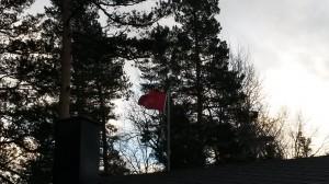 Flagget sto rett ut hele dagen.
